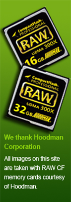 We thank Hoodman, All images on this site are taken with RAW CF memory cards courtesy of Hoodman.